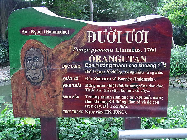 Cambodia-1-1565
